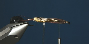 Fly tying - George´s Grant Stone Fly - Step 6