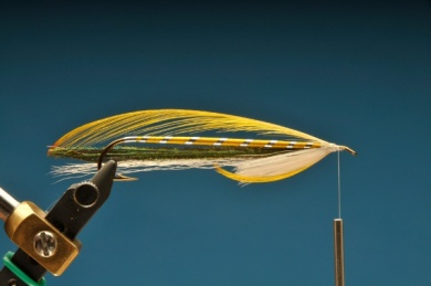 Fly tying - Gray Ghost - Step 7