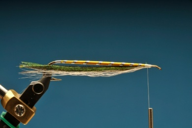 Fly tying - Gray Ghost - Step 6