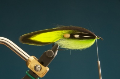 Fly tying - F & H Matuka - Step 8