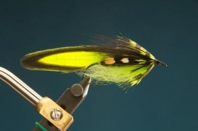 Fly tying - F & H Matuka - Step 10