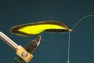 Fly tying - F & H Matuka - Step 5