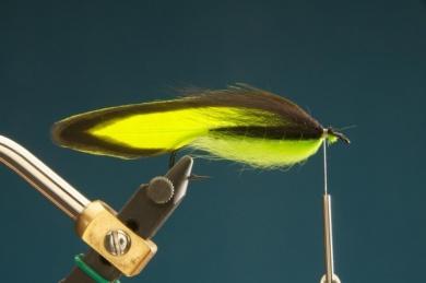 Fly tying - F & H Matuka - Step 7