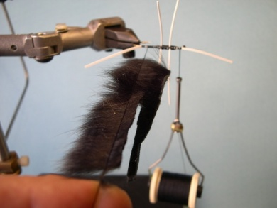 Fly tying - Cousin Itt - Step 7