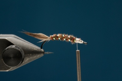 Fly tying - Tailmaster Emerger - Step 3
