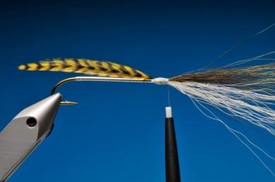 Fly tying - Argentine Perch Thunder Creek - Step 4