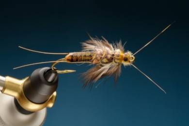 Fly tying - Stonebou - Step 10