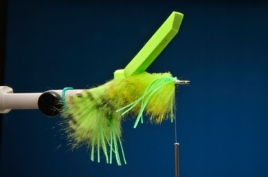 Fly tying - Snake Frog - Step 6