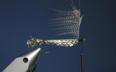 Fly tying - Zonker Variation - Step 7