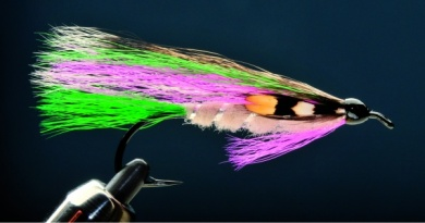 Fly tying - LITTLE RAINBOW TROUT - Step 9