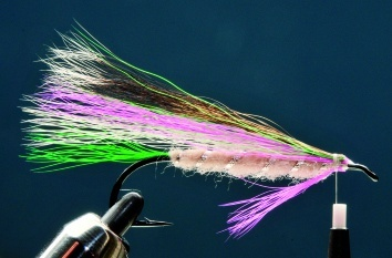 Fly tying - LITTLE RAINBOW TROUT - Step 7