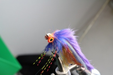 Fly tying - The SPC - Step 6