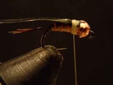 Fly tying - Sulphur on a Jig Hook - Step 10