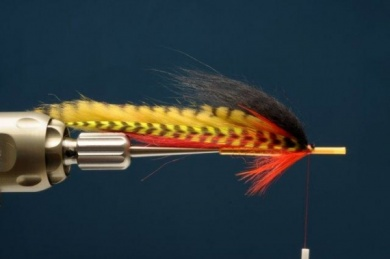 Fly tying - Hot Perch Tube - Step 5