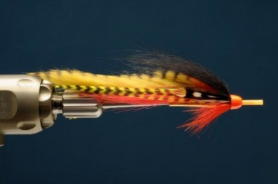 Fly tying - Hot Perch Tube - Step 7