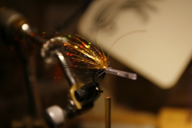 Fly tying - Weedless Optic Minnow feat. Brad Bohen - Step 7