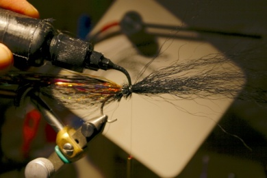 Fly tying - Weedless Optic Minnow feat. Brad Bohen - Step 9