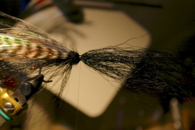 Fly tying - Weedless Optic Minnow feat. Brad Bohen - Step 14