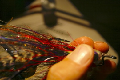 Fly tying - Weedless Optic Minnow feat. Brad Bohen - Step 28