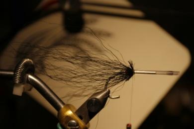 Fly tying - Weedless Optic Minnow feat. Brad Bohen - Step 6