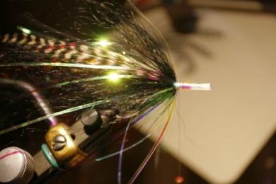 Fly tying - Weedless Optic Minnow feat. Brad Bohen - Step 15