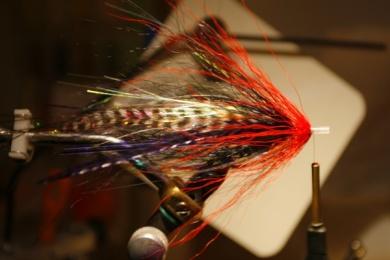 Fly tying - Weedless Optic Minnow feat. Brad Bohen - Step 17