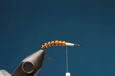 Fly tying - M.M. Translucent Pupa - Step 1