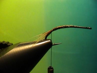 Fly tying - Rhyacophila Emerger - Step 1