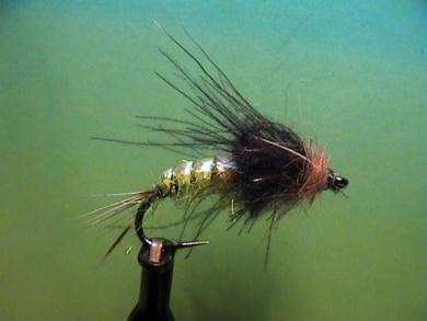 Fly tying - Rhyacophila Emerger - Step 7