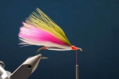 Fly tying - M.M. Rainbow Muddler - Step 6