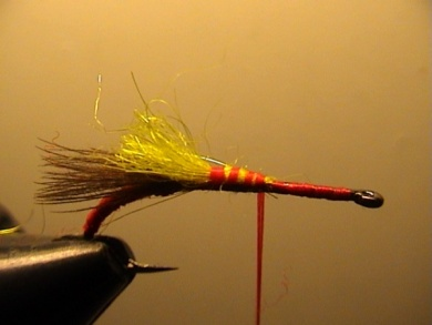 Fly tying - Grayling Attractor - Step 4