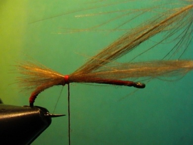 Fly tying - Grayling Attractor - Step 2