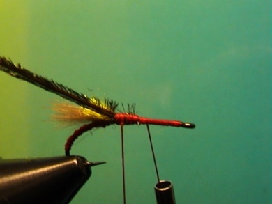 Fly tying - Grayling Attractor - Step 5