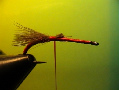 Fly tying - Grayling Attractor - Step 3