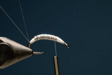 Fly tying - M.M. Czech Junín - Step 2