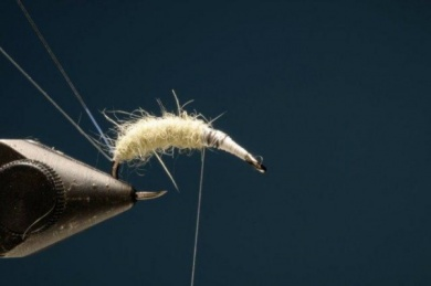 Fly tying - M.M. Czech Junín - Step 3