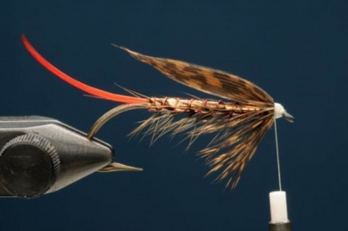 Fly tying - Copper Ilusion - Step 7