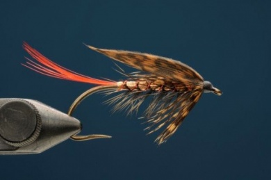 Fly tying - Copper Ilusion - Step 8