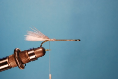 Fly tying - Pearl Shad - Step 1