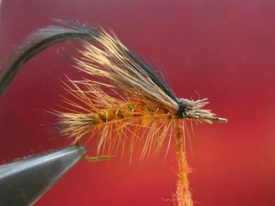 Fly tying - Stimulator fly - Step 6