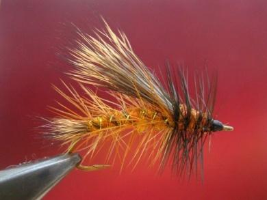 Fly tying - Stimulator fly - Step 8