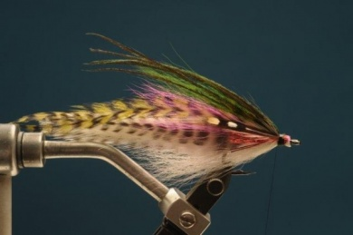 Fly tying - Rainbow Warrior - Step 7