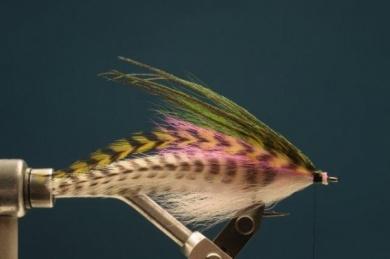 Fly tying - Rainbow Warrior - Step 6