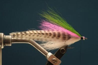 Fly tying - Rainbow Warrior - Step 4
