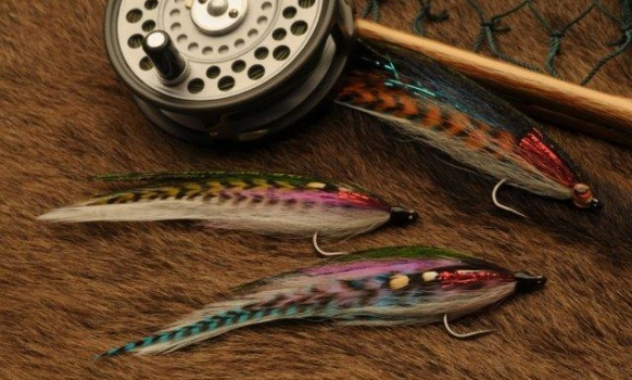 Since I first started fly fishing I was attracted by large streamers, both those made with feathers or hairs. Brooks' Blondes have always given me good results, they are timeless I'd say. That's why I made new adaptations of this model throughout the years, for different waters and fish. The Rainbow Warrior is like a Blonde whose design makes it move more water without it being heavy. Adding barred feathers, like dyed grizzly rooster, makes imitating small trout and other fish easier. Peacock, red flashabou and jungle cock give it some color details that make it more attractive under the water.  Bid streamers are ideal for big trout, but using other colors makes this fly great for golden dorados, peacock bass and many sea species; that's why I tie them on strong lasting hooks and don't change them when I change species.