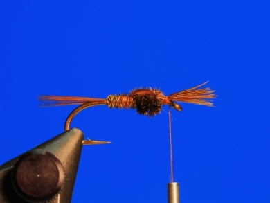 Fly tying - Pheasant Tail - Step 7