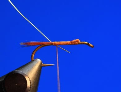 Fly tying - Pheasant Tail - Step 1