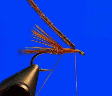 Fly tying - Pheasant Tail - Step 5