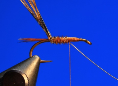 Fly tying - Pheasant Tail - Step 4