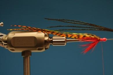 Fly tying - Autumn Hope - Step 7